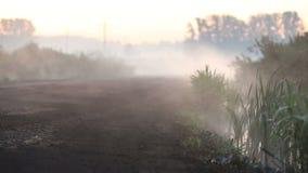De mist kruipt uit op de weg stock videobeelden