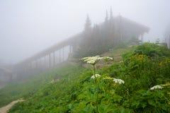 De mist omringt het bezoeker` s centrum bij Logan ` s Pas royalty-vrije stock afbeeldingen