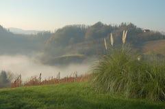 De mist van de herfst Stock Afbeelding