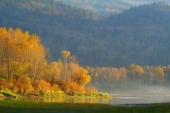 De mist van de herfst Stock Fotografie
