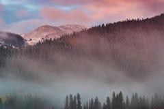 De mist van de herfst Vroege ochtend Stock Foto