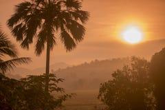 DE MIST VAN DE HET LANDSCHAPSochtend VAN THAILAND CHIANG RAI Stock Foto