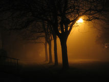 De Mist van de nacht Stock Foto's