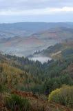 De mist van de ochtend op de vallei stock fotografie