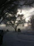 De mist van de ochtendsneeuw over weiland Royalty-vrije Stock Afbeeldingen