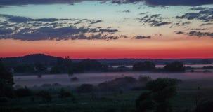 De mist van de Timelapsezomer over de groene vallei na zonsondergang in bos stock footage