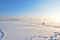 De Mist van de winter, de Zon en de Skiër royalty-vrije stock foto's