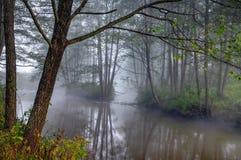 De mist van de herfst over de wilde rivier royalty-vrije stock foto's