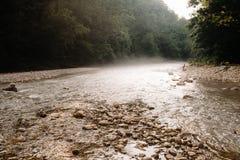 De mist van de de zomerochtend spreidt langs het water van een bergrivier die door een bos vloeien uit stock afbeelding