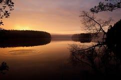 De mistige, houten meerherfst, in de stille ochtend Royalty-vrije Stock Fotografie