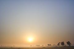 De mistige ochtend van de winter royalty-vrije stock afbeeldingen