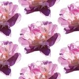 De modèle poly fleur rose sans couture bas Grande belle basse poly pivoine illustration stock