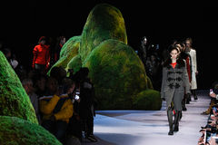 De modellen lopen het baanfinale bij de modeshow van Altuzarra Februari 2017 Stock Afbeelding