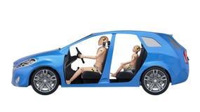 De Modellen van de neerstortingstest in de Auto royalty-vrije illustratie