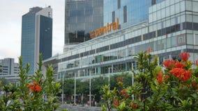De moderne bouw van Clarke Quay Central en oranje bloemen stock video