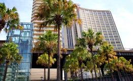 De moderne glasbouw en palmen Royalty-vrije Stock Foto