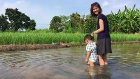 De moderne moeder loopt haar zoon op een padiegebied stock footage