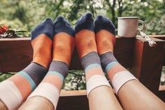 De modieuze sokken op paarbenen en het metaal vormen op houten portiek met mening over hout in bergen tot een kom Het gelukkige f stock afbeelding