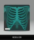 de modification de foie noir de graphisme de protection blanc médical simplement Rayon X plat d'icône de vecteur de thorax Photos libres de droits