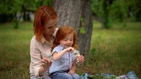 De moeder en weinig dochter vertellen fortuin op madeliefje stock footage
