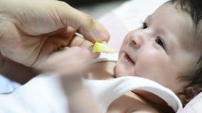 De moeder geeft kleine gesneden kweepeer aan weinig babymond stock video