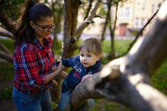 De moeder helpt de zoon om op een boom te beklimmen Stock Foto's