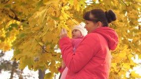 De moeder houdt baby in haar wapens en kust hem op wang, toont gele bladeren aan kind en lacht stock videobeelden