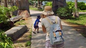 De moeder neemt een beeld van een jongen van het peuter springen van steen stock footage