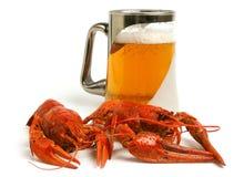 De mok van het bier met crawfishes Stock Foto's