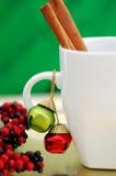 De Mok van Kerstmis Royalty-vrije Stock Afbeeldingen