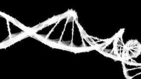 De molecule4k Lijn Alpha Matte van DNA motie van de Achtergrond Digitale Binaire Veelhoekvlecht stock footage