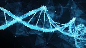 De molecule4k Lijn van DNA motie van de Achtergrond Digitale Veelhoekvlecht stock videobeelden