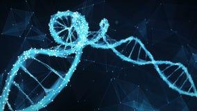 De molecule4k Lijn van DNA motie van de Achtergrond Digitale Veelhoekvlecht stock footage