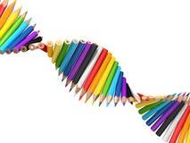 De molecule van DNA van potloden Stock Foto