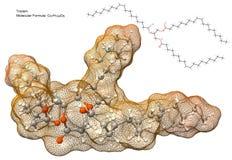 De molecule van het triglyceride Stock Afbeelding