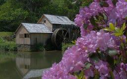 De molen Stock Afbeeldingen