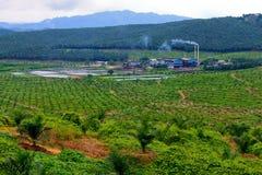 De Molen/de Fabriek van de palmolie Stock Afbeelding