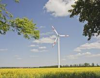 De molen van de wind op een gebied royalty-vrije stock afbeeldingen