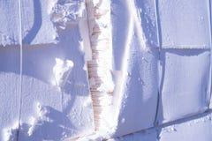 De molen van het papier en van de pulp - Cellulose royalty-vrije stock afbeelding