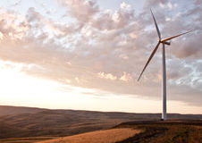 De molenlandbouwbedrijf van de wind Stock Foto's