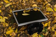 De monitor van de computer is leugens op het de herfst gele gebladerte in de werf royalty-vrije stock afbeeldingen