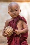 De monnik van het portret jonge kind in Myanmar, Birma Royalty-vrije Stock Fotografie