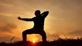 De monnik van de mensenstrijder het praktizeren de kungfu van de silhouetkarate op de grasrijke horizon bij zonsondergang Het bee stock videobeelden
