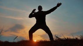 De monnik van de mensenstrijder het praktizeren de kungfu van de silhouetkarate op de grasrijke horizon bij zonsondergang Het bee stock video