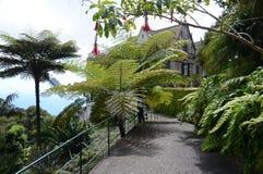 De Monte, Funchal, Madeira Lizenzfreies Stockbild
