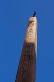 De Monumenten van Rome Stock Afbeeldingen