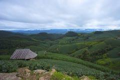 De mooie aard van de groene heuvels, de weiden en de plattelandshuisjes hebben kleine hutten Ideaal voor vakantievakantie stock afbeelding
