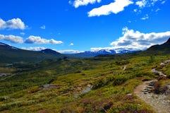 De mooie aard van Noorwegen in Nationaal park stock afbeelding
