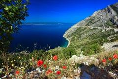 De mooie Baai van de Berg met Papavers Royalty-vrije Stock Afbeelding