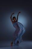 De mooie ballerina die met blauwe sluier dansen Stock Fotografie